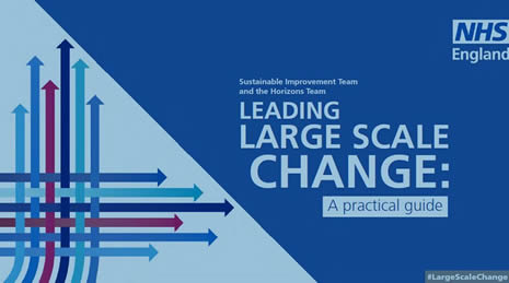 Leading Large Scale Change